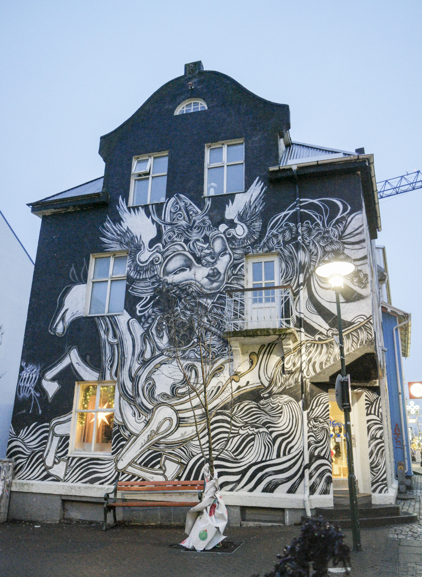 Full house street art in down town Reykjavik