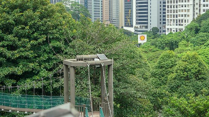 Urban Forest in Kuala Lumpur